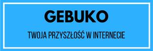 pozycjonowanie kraków - Gebuko.pl